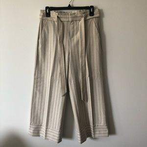 Banana Republic Blake Wide Leg Crop Pant Size 0
